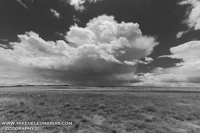 This cumulonimbus thunderstorm cloud quickly formed over the southeastern Wyoming landscape near Cheyenne. Early June is prime thunderstorm season in this area of Wyoming. Between watching the pronghorns gallop and the thunderstorms explode, it's quite a nature scene.