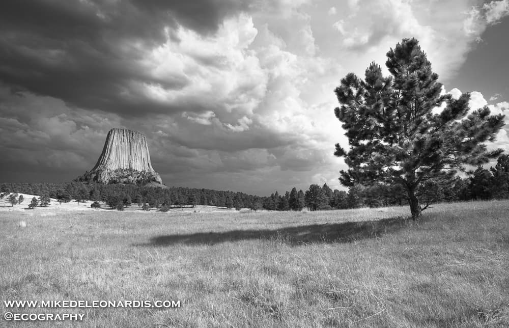 I drove for hours through beautiful Colorado and Wyoming landscape to photograph Devils Tower in northeastern Wyoming as severe storms would be going through the area. After getting pelted with hail, I hiked a quarter mile up a hill to get Devils Tower angled with the storm how I wanted. I was able to set up my camera with just enough time for one picture as the storms were leaving and the light was changing.