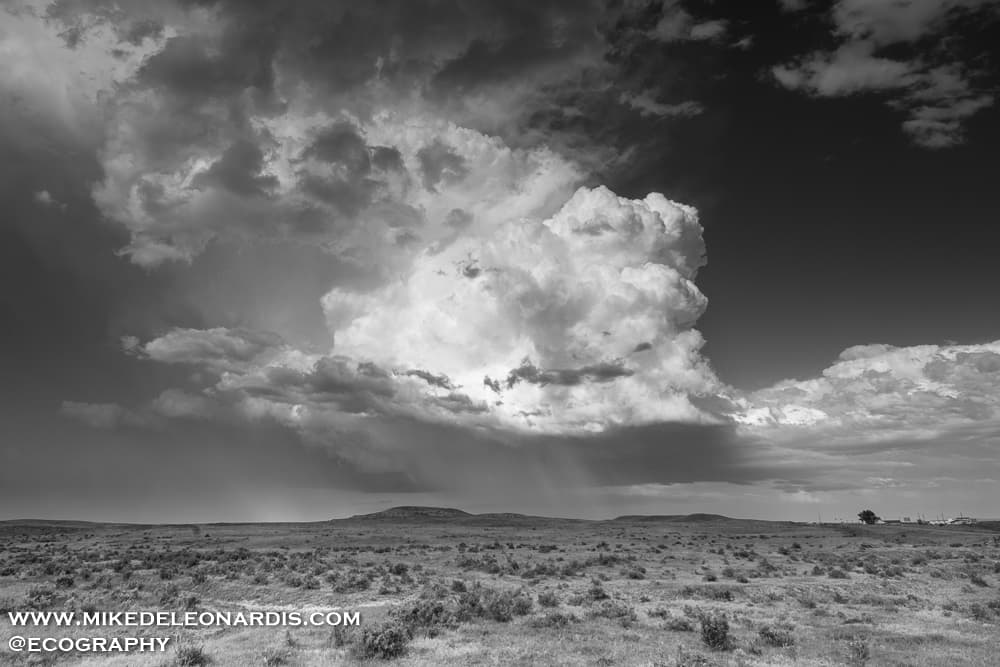 Montana Hailstorm