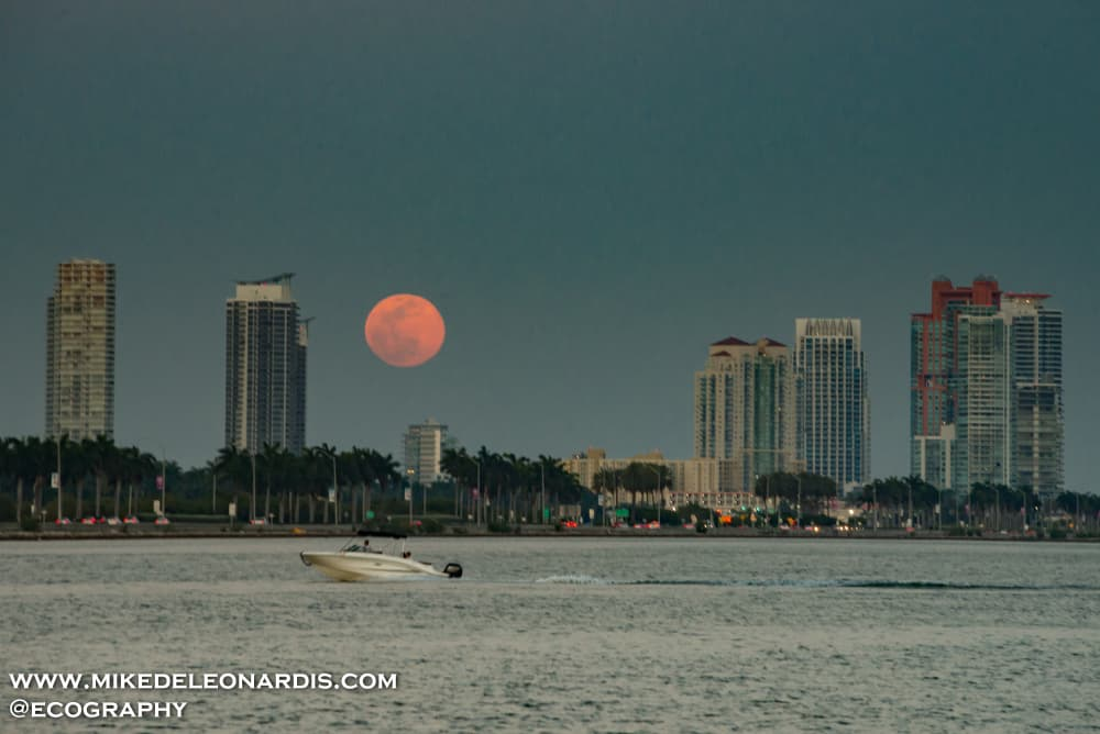 This Moonrise over Miami reminded me of my childhood watching Miami Vice on TV.