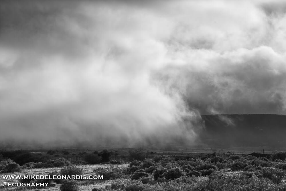 Foggy Chilean Landscape