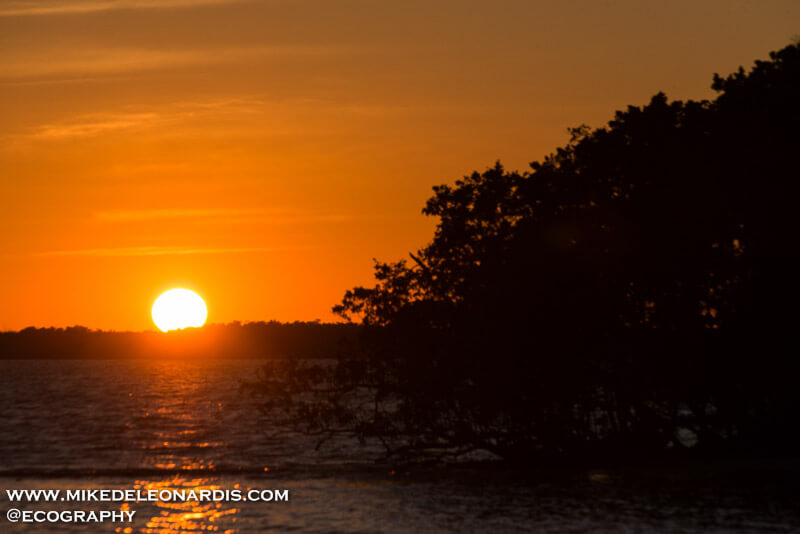 Sunset over Chokoloskee Bay, Florida
